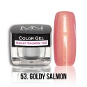 Color Gel - 53. Goldy Salmon 4g