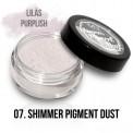 Shimmer Pigment  07 - 2g
